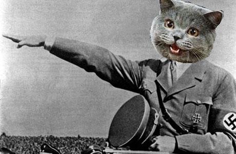 Hello 'n' stuff Nazi%20happy%20cat-1